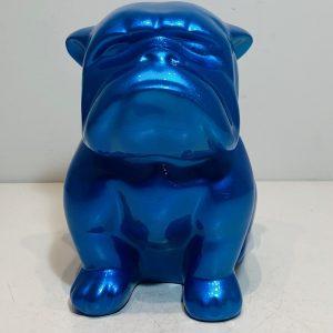petit-bouledogue-edition-candy-bleu